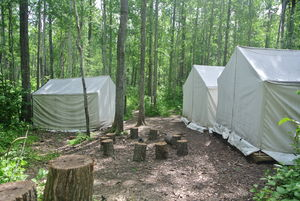 West Forest Campsite